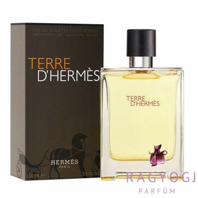 Hermes Terre D Hermes EDT 100ml